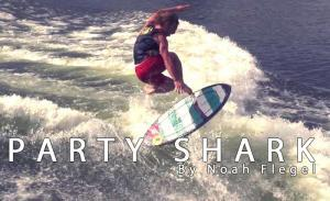 Party Shark - Noah Flegel