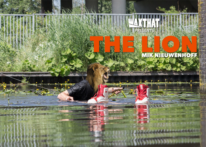 THE-LION-Mik-Nieuwenhoff