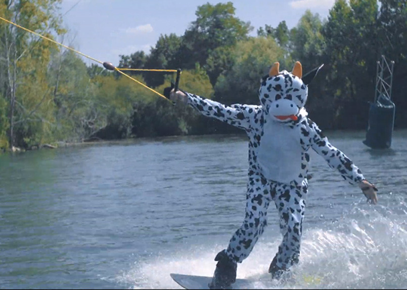 wakeboarder-style-animal